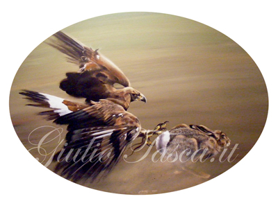 Golden eagle con lepre ovale 60 - Year 2010 - Private collection